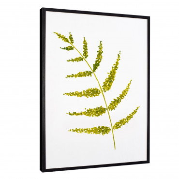 Plakat w ramie Leaves 9